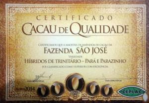 certificado ceplac